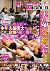 夫婦交換会 3 愛情はあるのにマンネリ気味で刺激が欲しい初対面の中年夫婦同士がホテルの一室で自慢の妻の裸を見られ、抱かれ、悶え、喘ぐ姿に燃え上がる