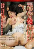 昭和の性犯罪史 戦時下の悪しき牢獄 秘密警兵・強制婦女性的拷問