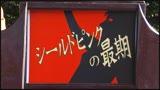 SUPER HEROINE アクションウォーズ05 超戦隊シールドファイブ 美咲カエラ/