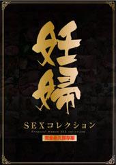 妊婦SEXコレクション