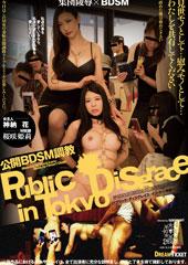 公開BDSM調教 桜咲姫莉・神納花