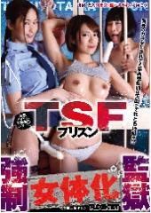 TSFプリズン強制女体化監獄