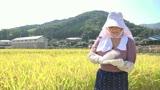 セックスと米作りが大好きな田舎のおばちゃんスペシャル30