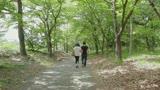 母と息子二人きりの絶頂SEX秘湯旅 〜梅ヶ島路・新湯路〜  片岡なぎさ・円城ひとみ0