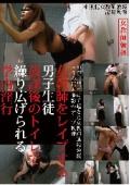 女教師をレ○プする男子生徒 放課後のトイレで繰り広げられる学内淫行