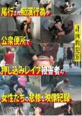 計画的犯罪 尾行され痴漢行為や公衆便所で押し込みレ○プ被害者の女性たちの悲惨な映像記録
