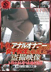 トイレでアナルオナニーに目覚めた女子校生を厳選した盗撮映像