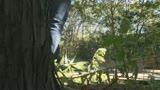 父に隠れて太陽の下でまぐわう愛ある親子の大自然交尾 笹山希 37歳24